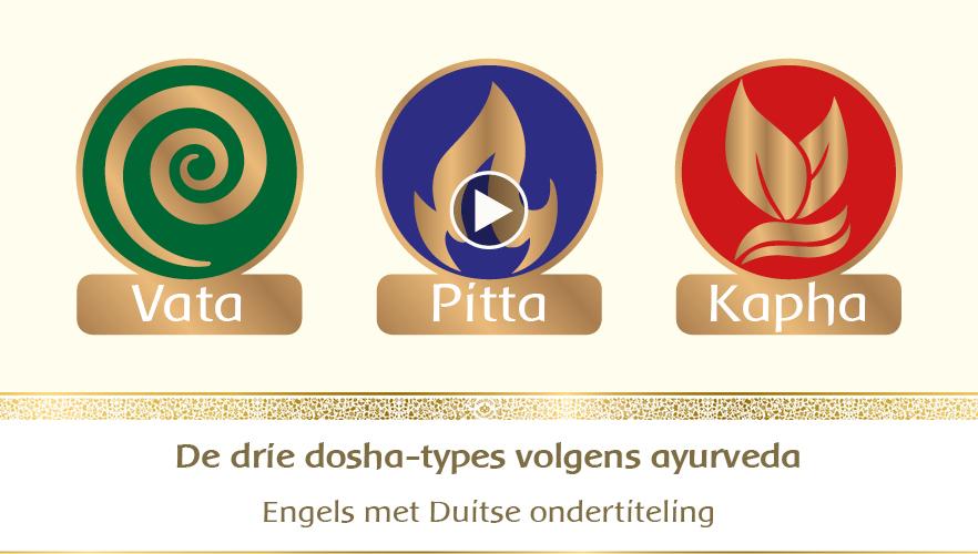 YouTube Webinar: De drie dosha-types volgens Ayurveda